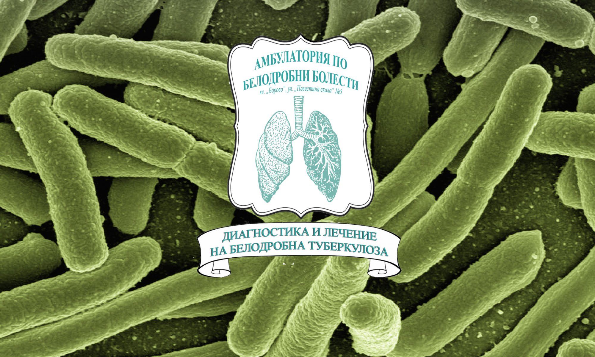 Амбулатория по Белодробни болести